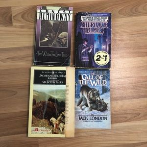 Other - Classic book bundle